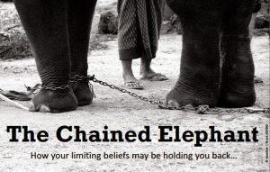the chained elephant